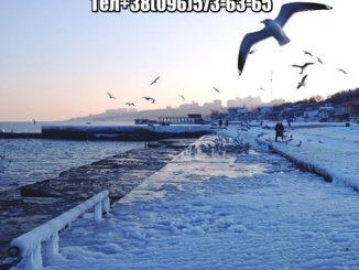 Прописка в Одессе Приморский район
